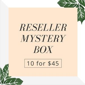 10 for $45 Name Brand Reseller Mystery Box